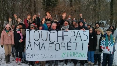 Touche pas à ma forêt du Morvan