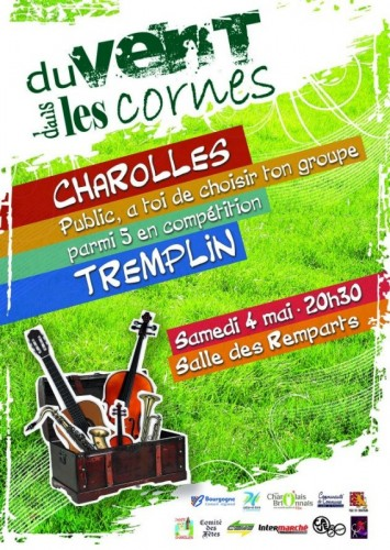 Tremplin 2013 du FVC à Charolles