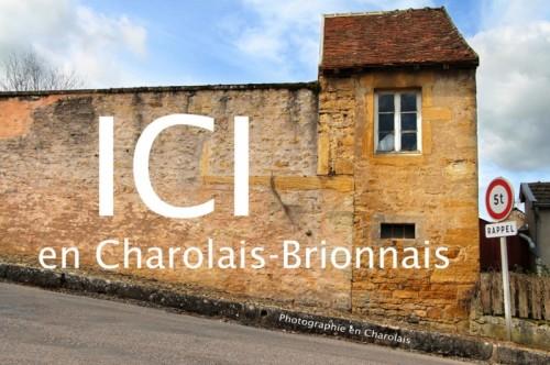 2013-10-21-Photos-Charolais