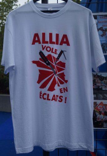 2016-10-21-allia-vole-eclats